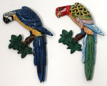 Parrot Magnets