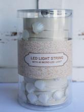 Seashell LED Light String
