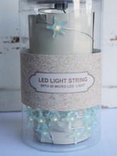 Lighted LED Starfish Strand