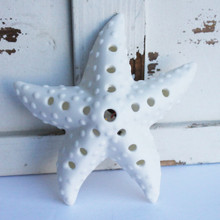 LED Starfish Light