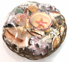 "10"" Shell Basket"