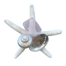 Pink Sea Glass Starfish Magnet
