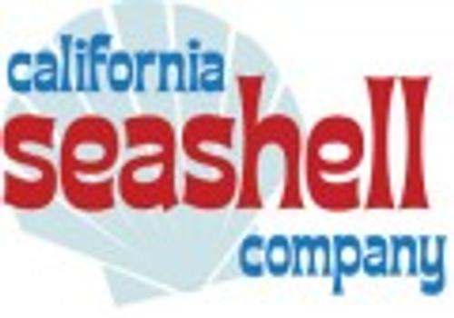 California Seashell Company
