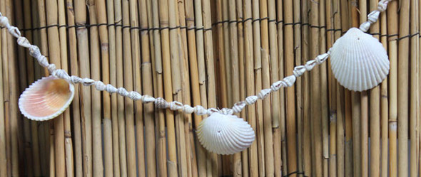 Nassa Shell & Lemon Cockle Garland Strand