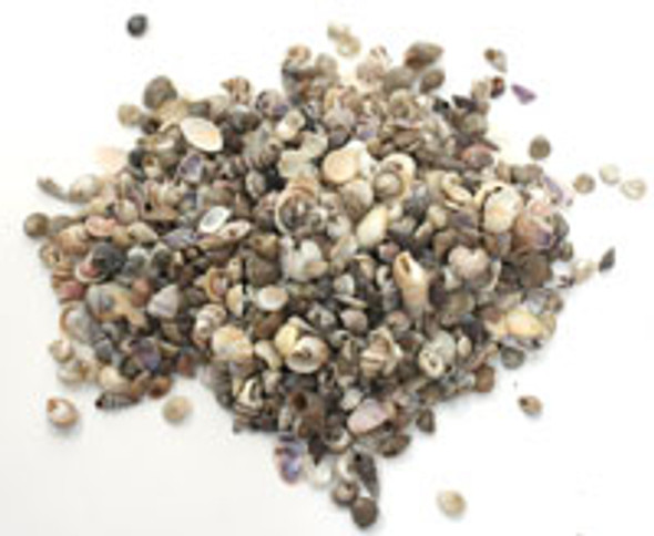 Tiny Philippine Mix 1kg