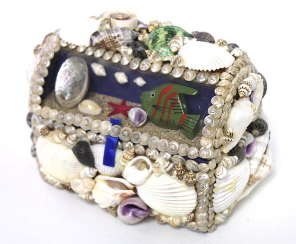 Aquarium Shell Box