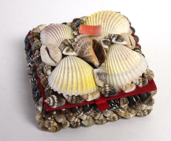 "Small Square Seashell 3"" Box"