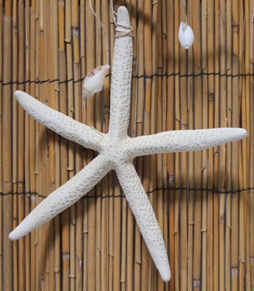 Large White Finger Starfish Garland
