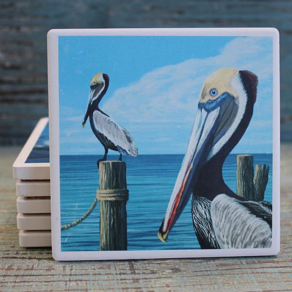 Brown Pelicans Coaster
