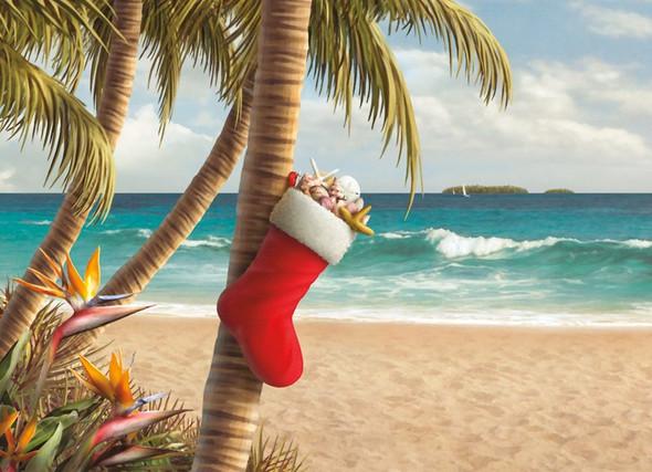 Stocking on Palm Christmas Card