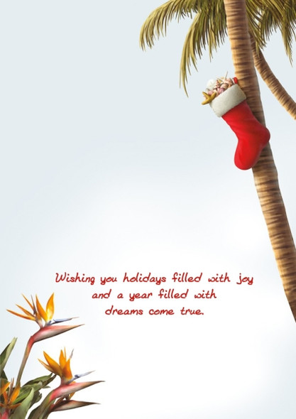 Wishing you holidays filled with joy and a year filled with dreams come true