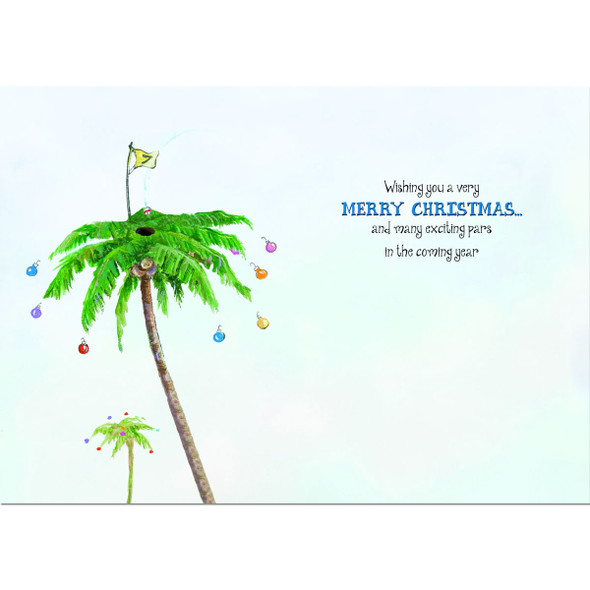 Wishing you a very Merry Christmas and many exciting pars in the coming year!