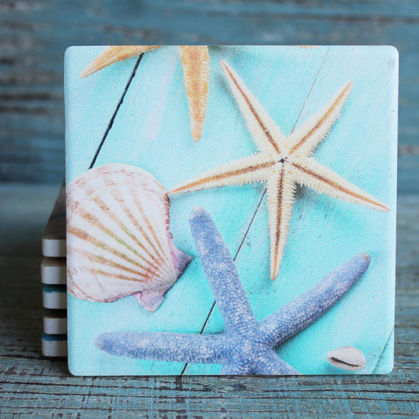Starfish & Shell on Blue