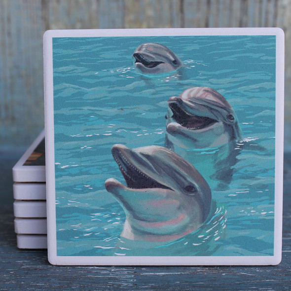 Dolphins Coaster
