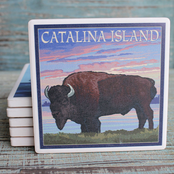 Catalina Island Buffalo Coaster