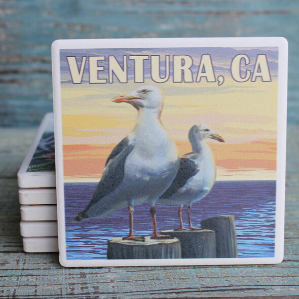 Ventura Seagulls Coaster