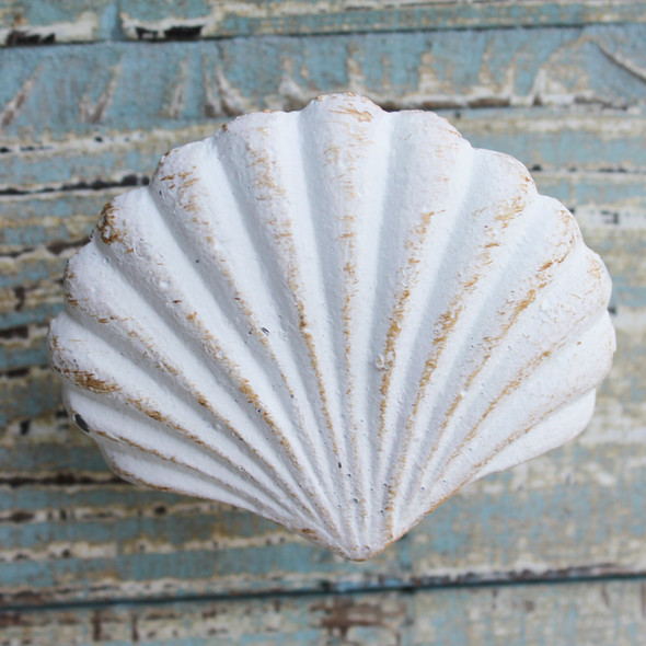 White Scallop Shell Iron Knob