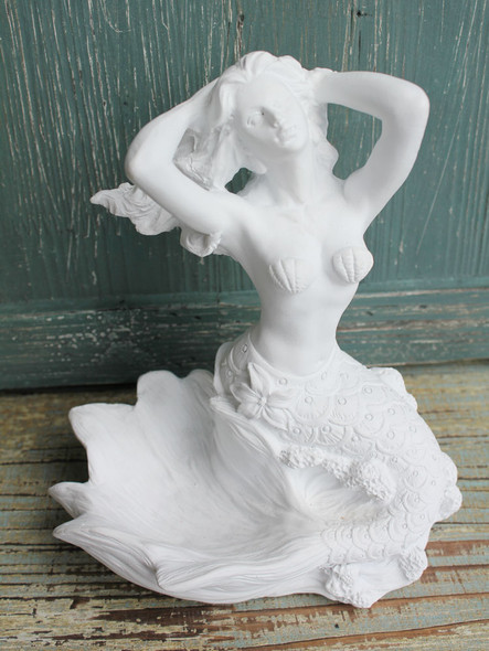 Mermaid Basking in the Sun