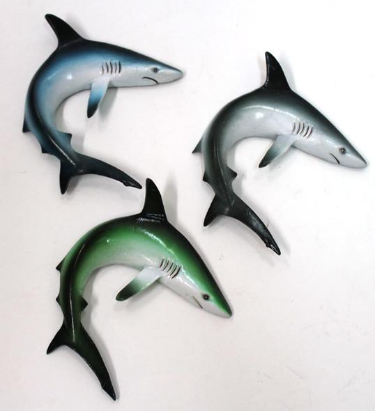 Shark Magnets