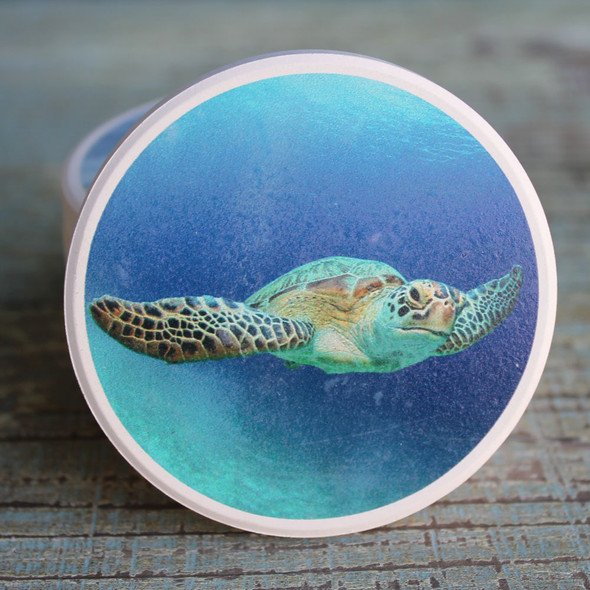 Sea Turtle Car Coaster