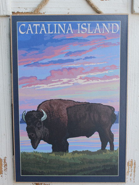Bison at Sunset Catalina Island