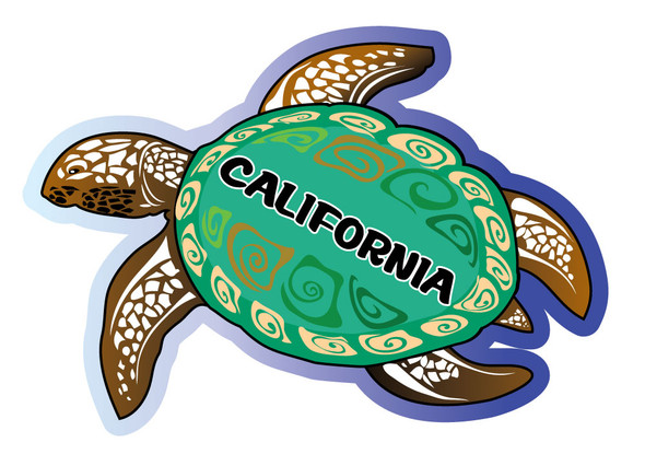 California Sea Turtle Sticker