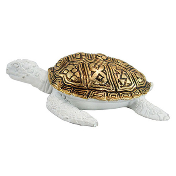 Gold Shell Turtle
