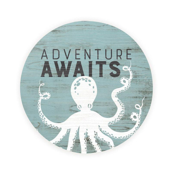 Adventure Awaits Octopus Car Coaster