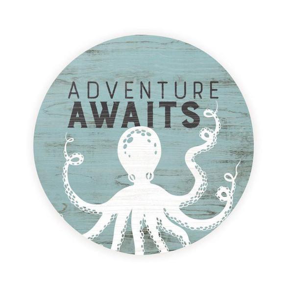 Adventure Awaits Octopus Car Coaster