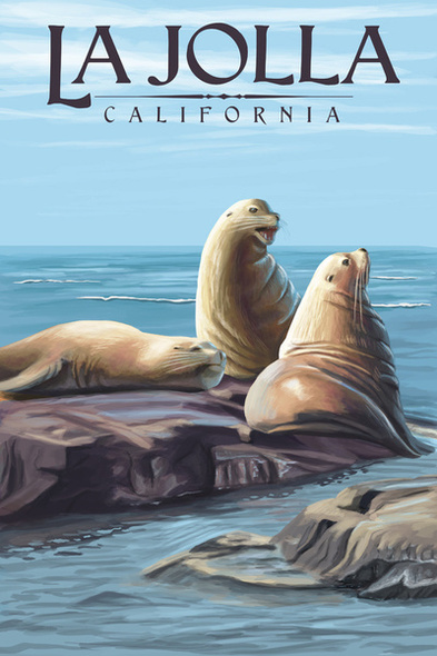 La Jolla Sea Lions Car Coaster