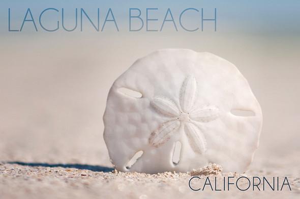 Laguna Beach Sand Dollar Car Coaster