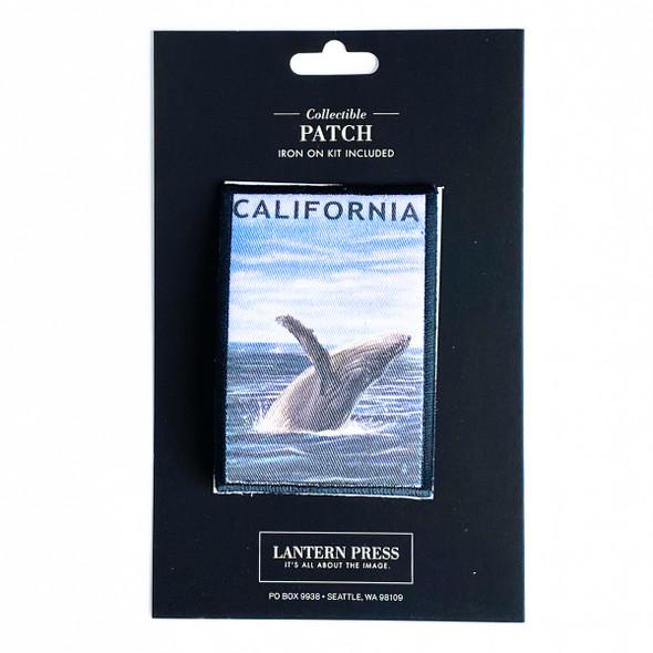 California Humpback Whale Patch