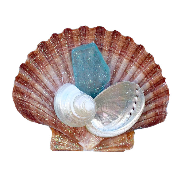 Brown Pectin with Aqua Sea Glass Magnet