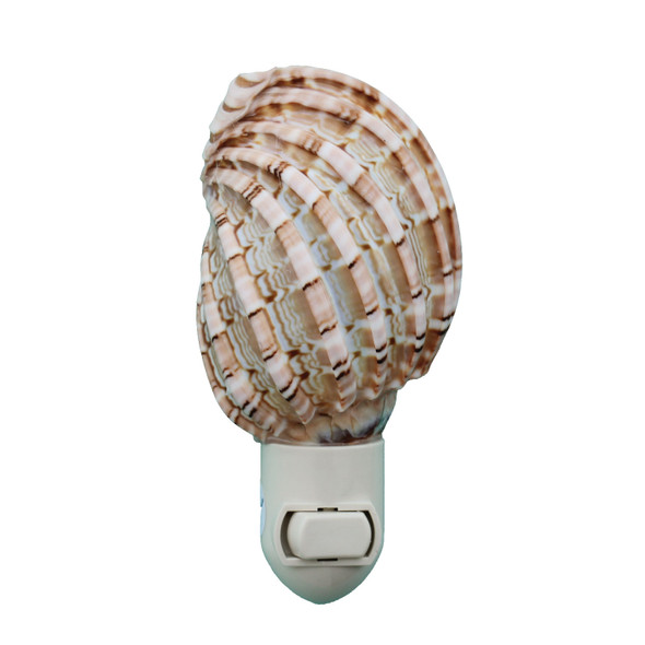 Harpa Shell Night Light