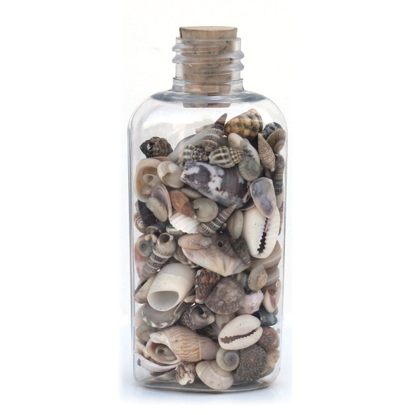 Flat Plastic Seashell Bottle