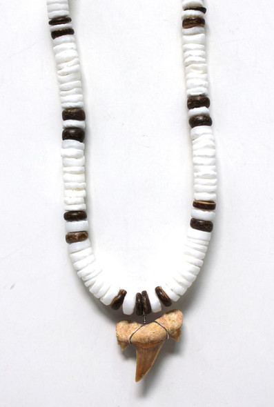 Coco Bead with Shark Tooth Necklace