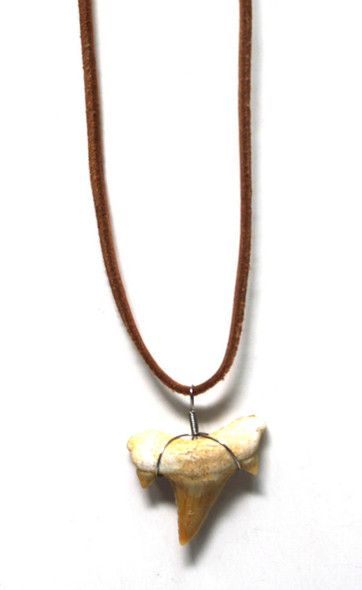 Brown Suede Shark Tooth Necklace
