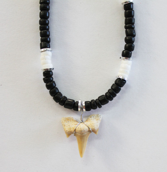Black and White Shark Tooth Necklace
