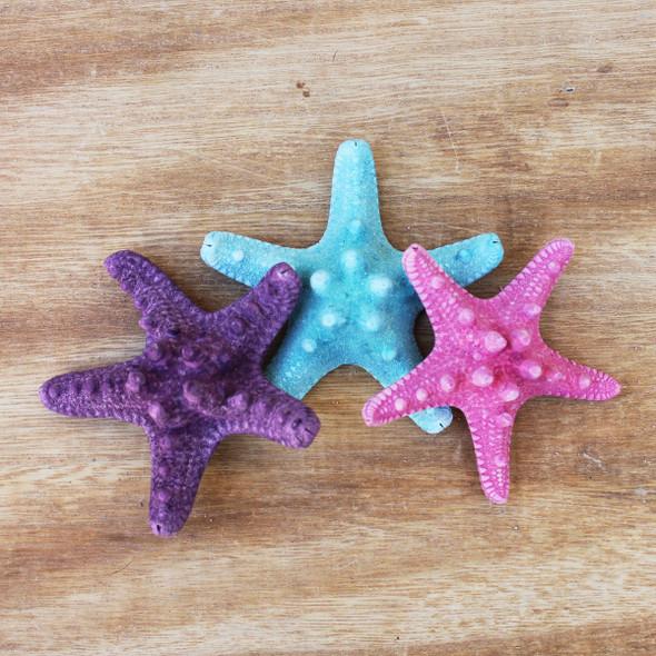Small Dyed Bumpy Starfish