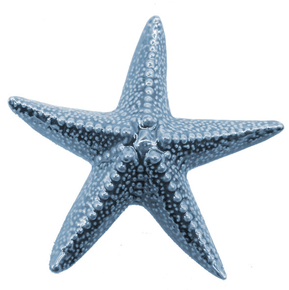 Porcelain Blue Starfish