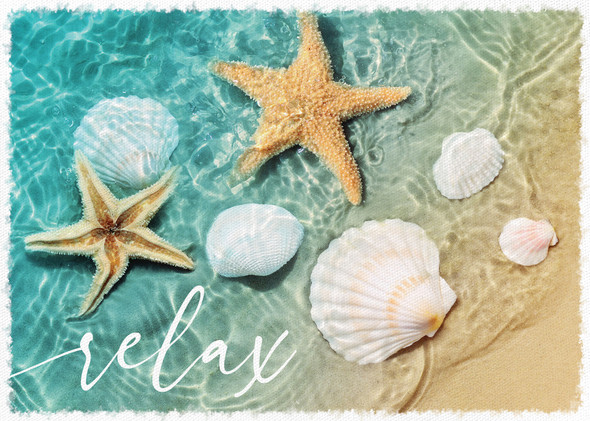 Relax Seashells Canvas