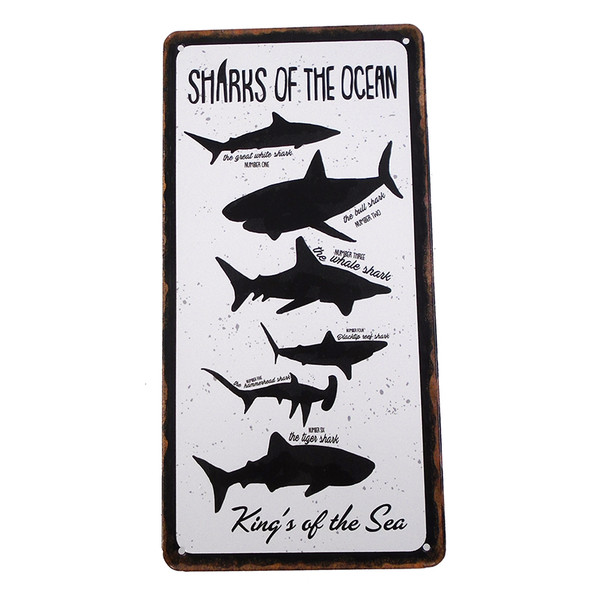 Sharks of the Ocean