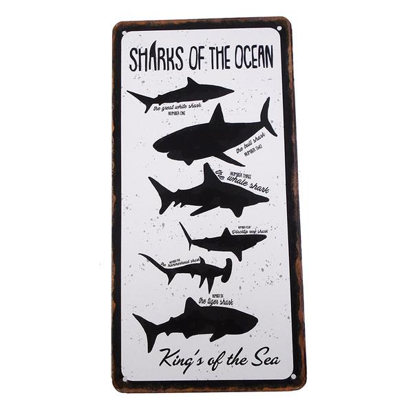 Sharks of the Ocean