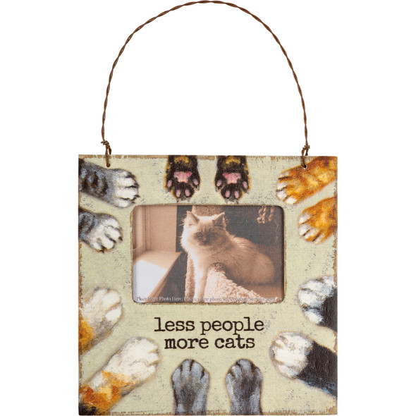 Less People More Cats