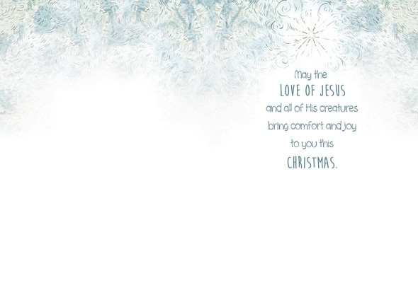 May the Love of Jesus and all of His creatures bring comfort and joy to you this Christmas.