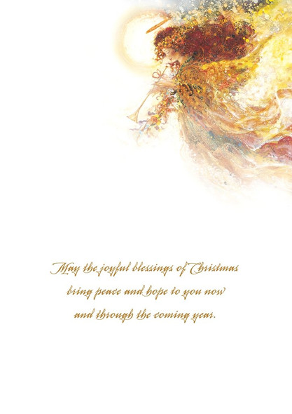 May the joyful blessings of Christmas bring peace and hope to you now and through the coming year.