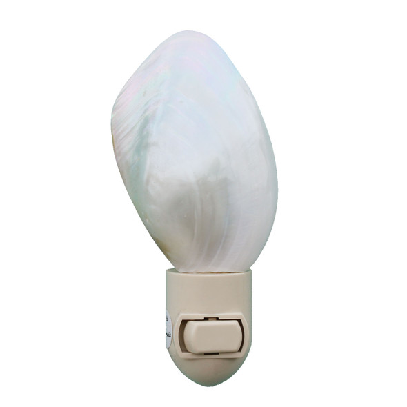 Polished Oyster Shell Night Light