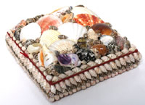 Square Seashell Box