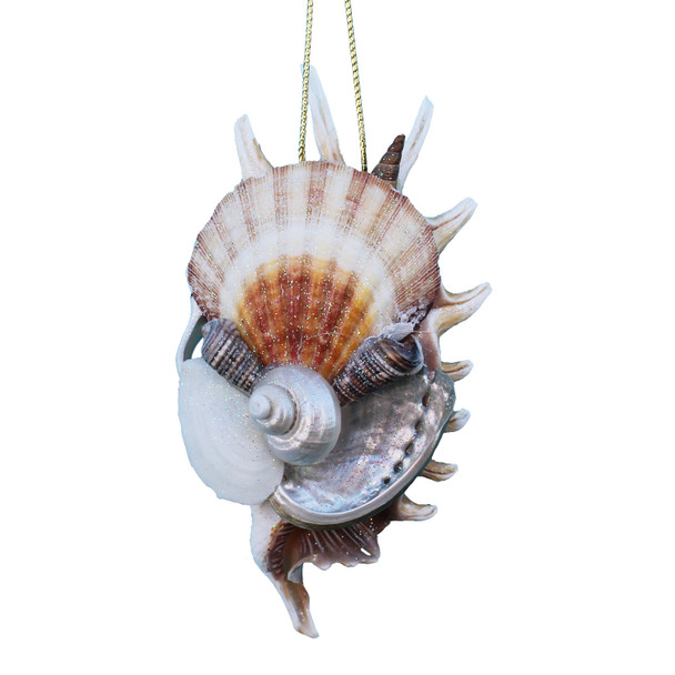 Hand-Crafted Sliced Millipede Shell Collage Ornament