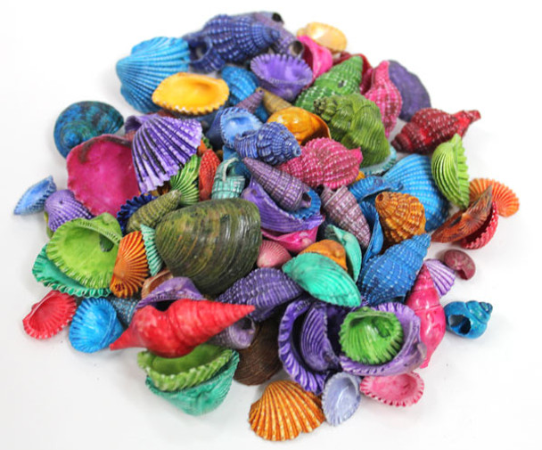 Color Seashell Mix - 1 kg